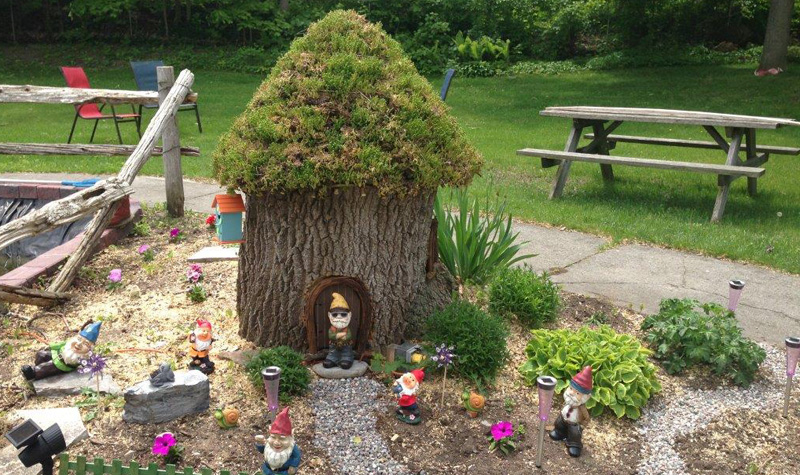 "The three-foot stump of a Manitoba maple that was recently cut down at Kentwood Park has become a ""gnome home."""